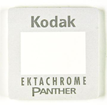 Kodak Post-It Ektachrome Panther